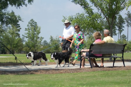 Couple walking their dogs in Kensington at Brunswick Forest