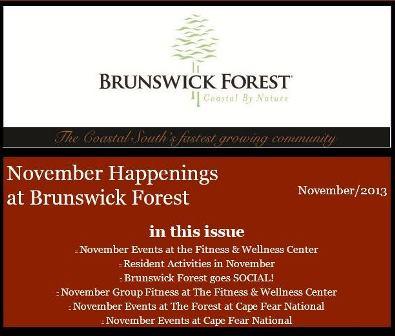 Nov Newsletter 2013