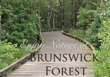ENJOY NATURE AT BRUNSWICK FOREST