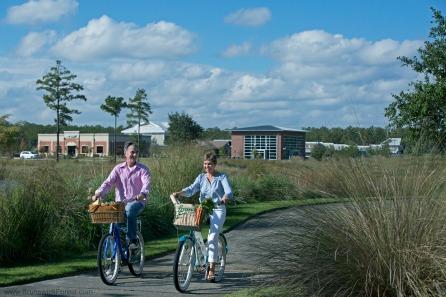 biking basket